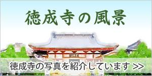 徳成寺の風景